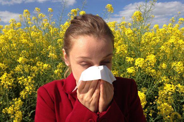 Schnupfen, Allergie